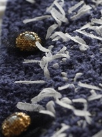 bluejacket.3n.jpg